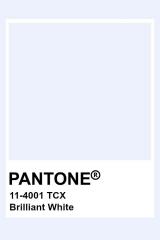 Pantone Brilliant White