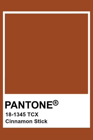 Pantone Cinnamon Stick