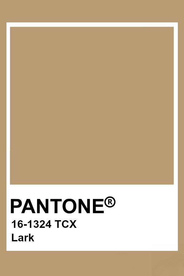 Pantone Lark