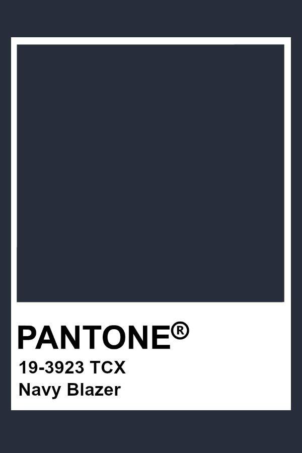 Patnone Navy Blazer