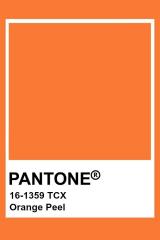 Pantone Orange Peel