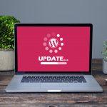 Ist es wichtig, WordPress Plugins und Themes zu aktualisieren?   With Love, Hülya