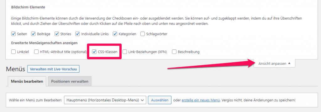 """CSS-Klassen in WordPress """"Ansicht anpassen"""" anzeigen"""